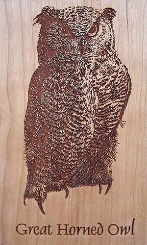 Laser Engraved Wood Great horned owl